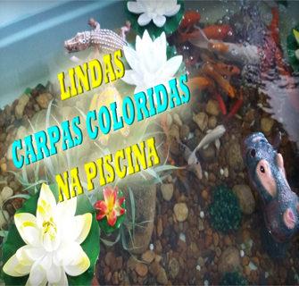Lago artificial lago artificial um canal de exposi o for Criadero de carpas